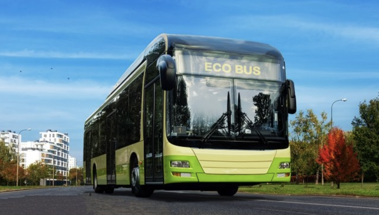 Por que o Dia do Meio-Ambiente é tão importante para o programa Despoluir